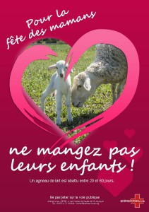 FetedesMeres_B5_agneaux (1)