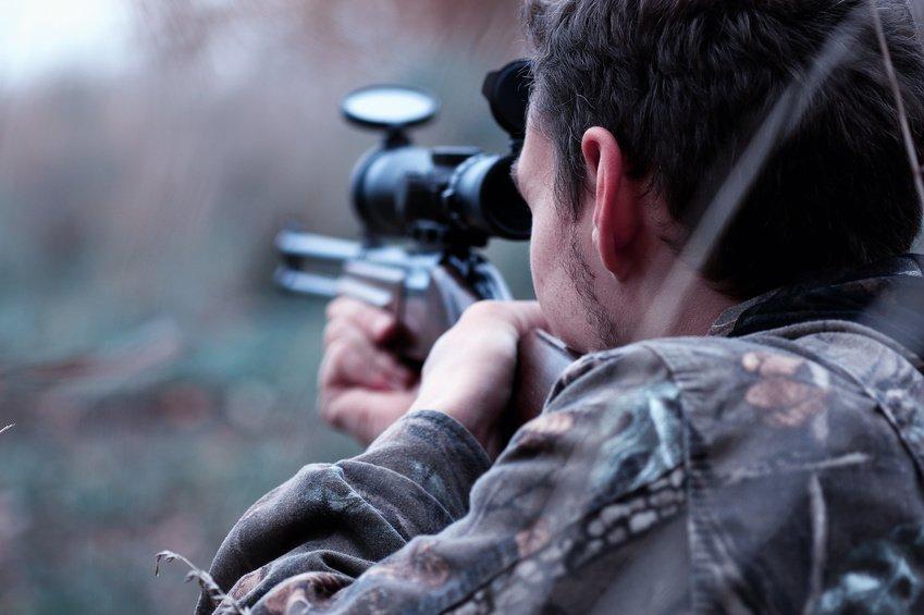 Pétition : sanctionnons les chasseurs avec un permis de chasser à points