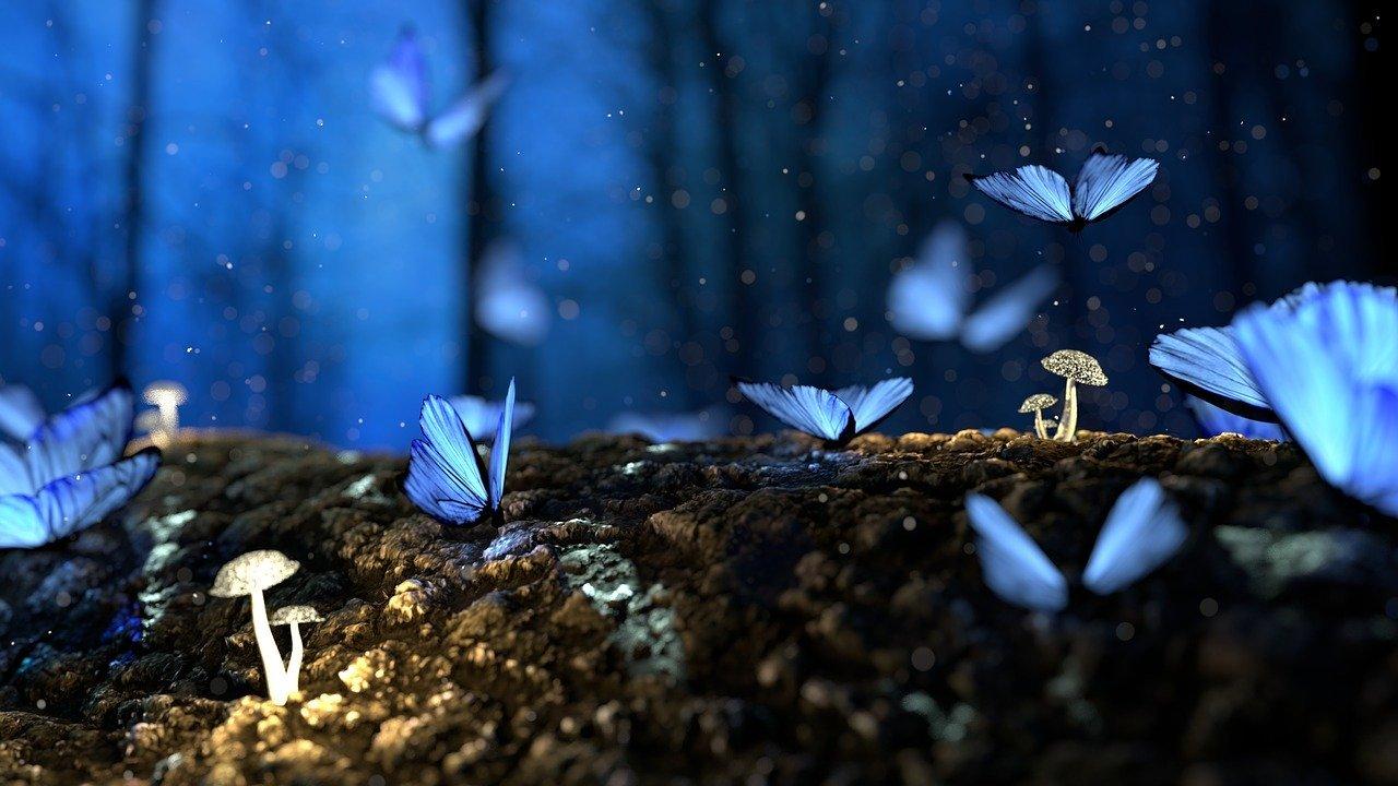J'ai fait le rêve d'un monde sans chasse : et si mon rêve était possible ?