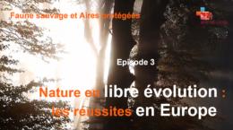 Nature en libre évolution